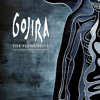 Download Gojira - The Heaviest Matter Of The Universe [Live]