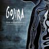 Gojira - The Heaviest Matter Of The Universe [Live]