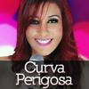 DVD | Musa do Calypso - Curva Perigosa