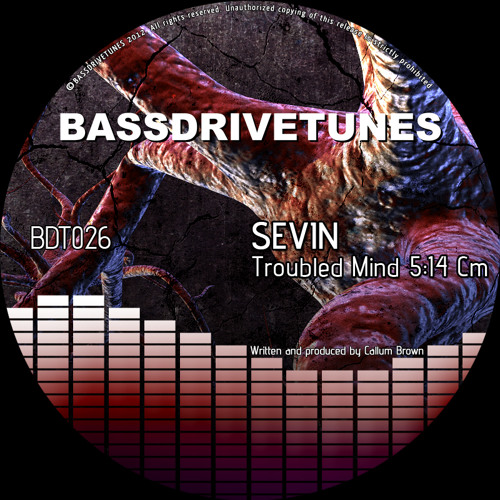 Sevin - Troubled Mind [BDT026] preview