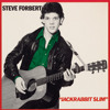 Free Download Steve Forbert | Big City Cat Live Mp3