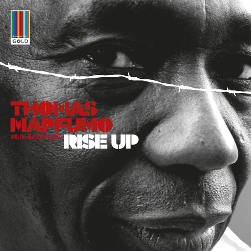 Thomas Mapfumo - Marudzi Nemarudzi (Real World Gold)