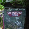 Strawberry Fields-Beatles (by rufinmusic  / voc by me & Kimberanne)