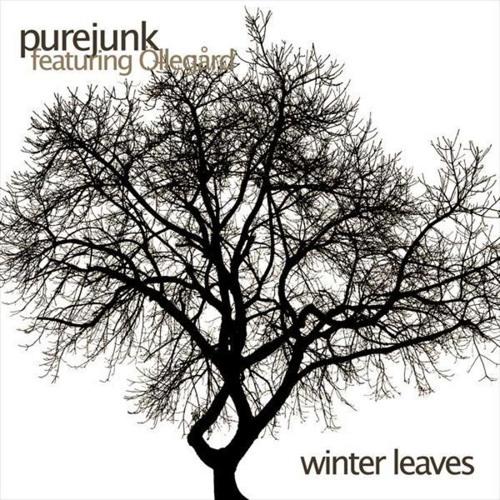 Purejunk - Winter Leaves (featuring Öllegård)