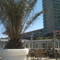 P&L and Jim Caligo - Party am Strand