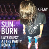Download K.Flay - Sunburn (Late Guest at the Party Remix) Mp3