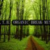 B.T.B. Organic Ambient & Lounge  Break Mix 1 >