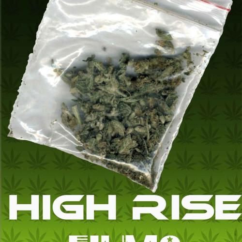 High Rise Music Group