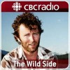 Wildside - Volcano eruption, Grizzly bouillabaisse, and a twin turkey attack - July 3, 2012