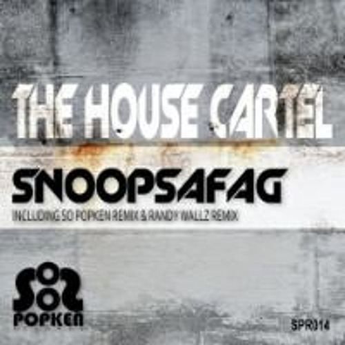 The Housecartel-Snoopsafag ( M.O.U.S.E. Meet Her At The Loveparade Edit )