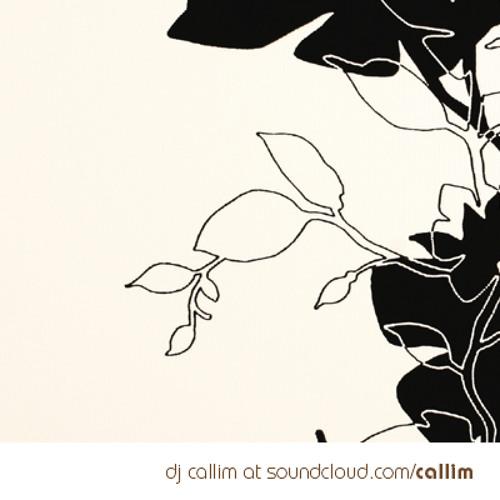 Callim - @BRN 2012 | dj set