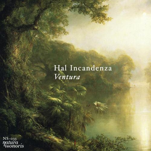 Hal Incandenza - Ventura (Original)