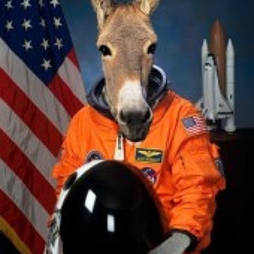 Donkey Star