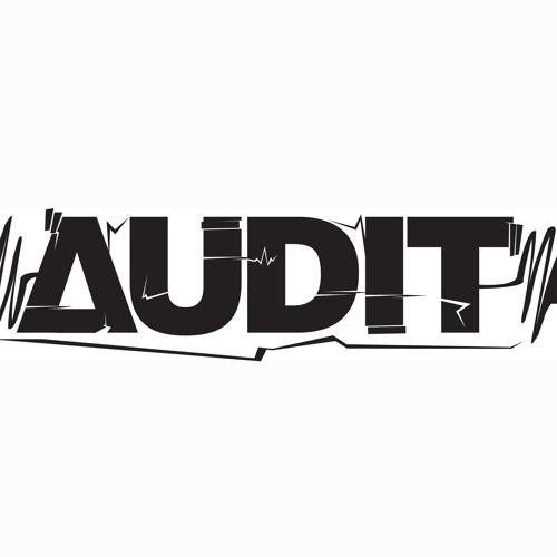 Audit - Future Suggestions mix 2012