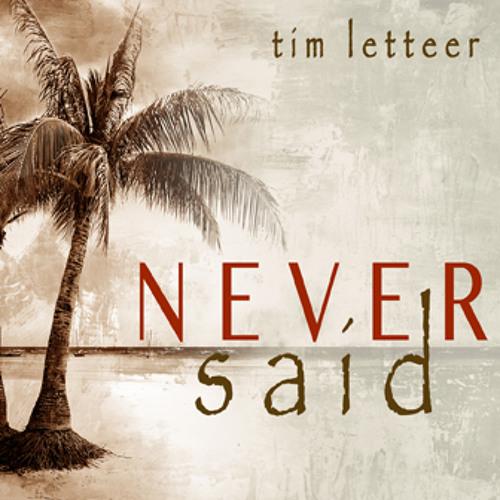 Never Said - Tim Letteer (Besa El Tambor Mix)