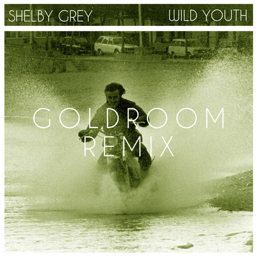 Shelby Grey - Wild Youth (Goldroom Remix)