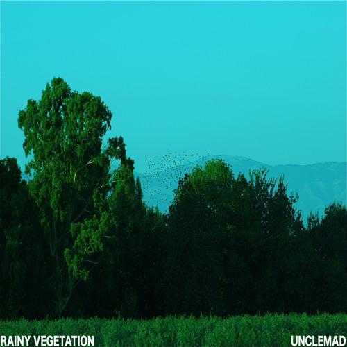 4 - Deserted cave - Album RAINY VEGETATION