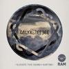 Calyx & TeeBee - Elevate This Sound