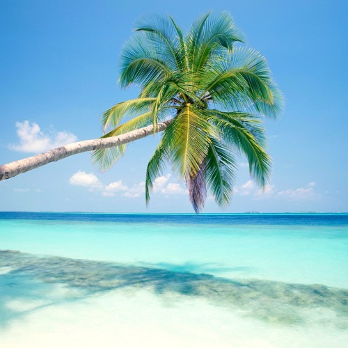 Breezin' In The Tropics ( Dunkstrumental Freestyle )