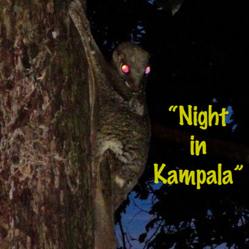 Night in Kampala (and what tra…