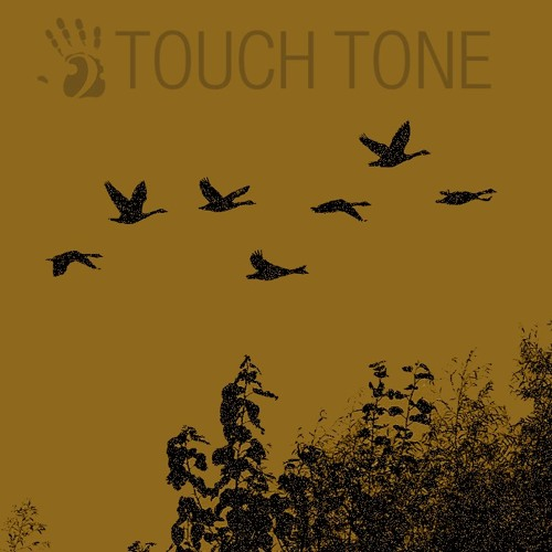 Link - Daylight Hours (Touchtone Records #1)