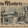 Just Freinds The Mondlarks Hammond B3 Trio Mp3