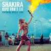 shakira feat. wyclef jean (  Dj Guto souza )