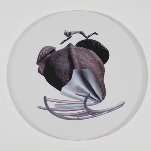 Anna Staffel - Elephant