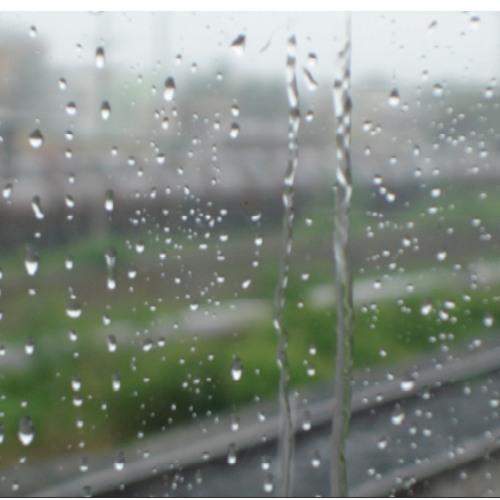 Wellys Rainss
