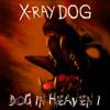 X-Ray Dog - The Prophet