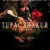 Tupac Shakur - Back In The Day (feat. Erykah Badu)