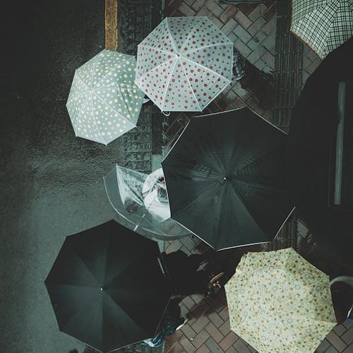 PABLO MORRIS - Rain Against my Window