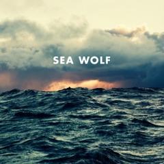 Sea Wolf - Old Friend