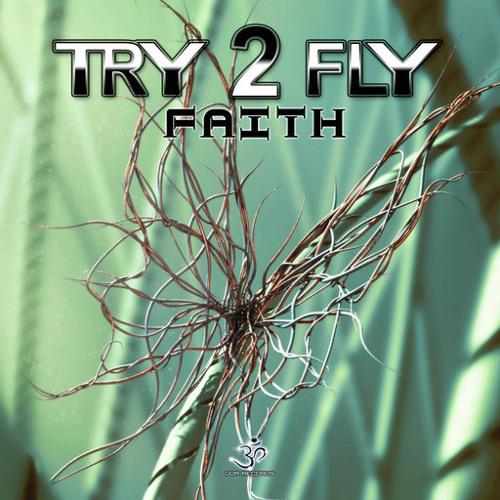 Try2Fly - Faith