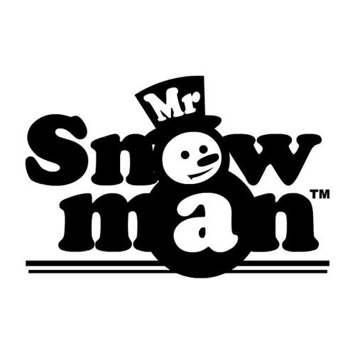 Mr Snowman - Lost