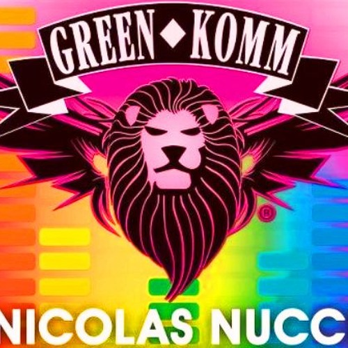 Nicolas Nucci Dj set peak time at GreenKomm Csd Cologne 2012