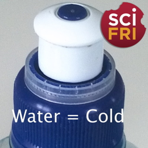 SciFri Snack: Sweating Out the Cold