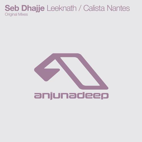 Seb Dhajje - Leeknath  [Anjunadeep] (Preview)