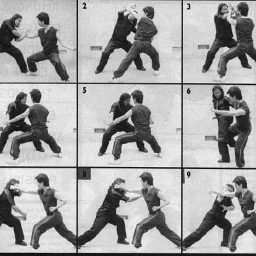 Tecnicas de Kung Fu