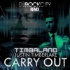 Timbaland - Carry Out (DJ Rock City Remix).mp3
