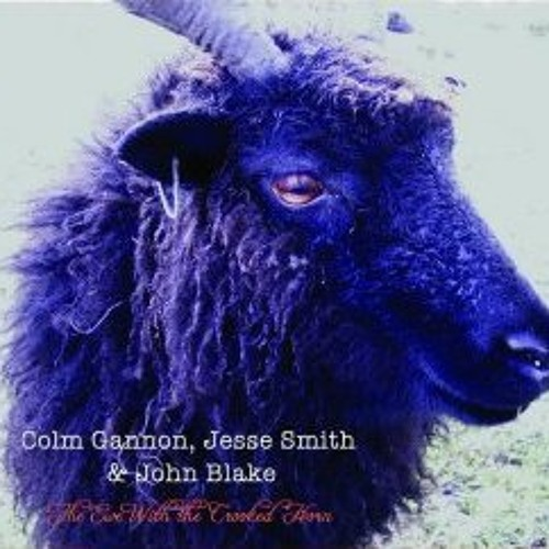 Colm Gannon, Jesse Smith and John Blake, The Kesh,(The Ewe with the Crooked Horn) 2010,