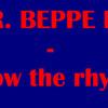 MR. BEPPE DJ - follow the rhythm