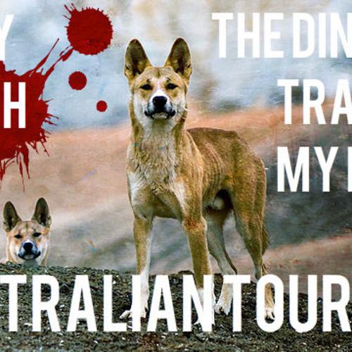 THE DINGOES ₮℞₳₱₱€Ď MY BABY - AUSTRALIAN TOUR MIX
