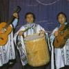 Spot - Trio Mar del Plata en Concepción