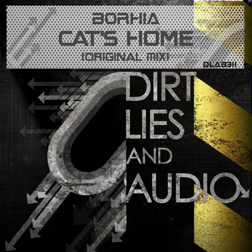 CAT'S HOME / BORHIA ( forthcoming in Dirt,Lies and Audio Black record ) OUT NOW