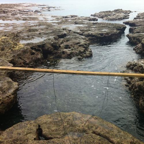 Kalaone Reef hydrophone