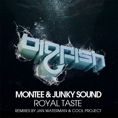 Montee & Junky Sound - Royal Taste (Jan Waterman Remix)
