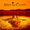 Them Bones - Alice in chains Tribute