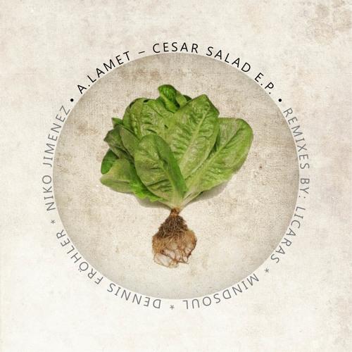 Alvaro Lamet - Cesar Salad (Dennis Frohler Remix)