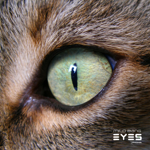 Mild Bang & Heidi Sabertooth - Abre tus Ojos (original mix) I Records